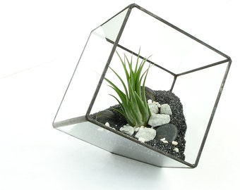 Terrarium Cube, Square Air Plant Terrarium, DIY Kit
