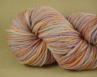 Hand Dyed Yarn - Multicolor Madness - Worsted Weight Yarn - 100% Merino Wool Yarn