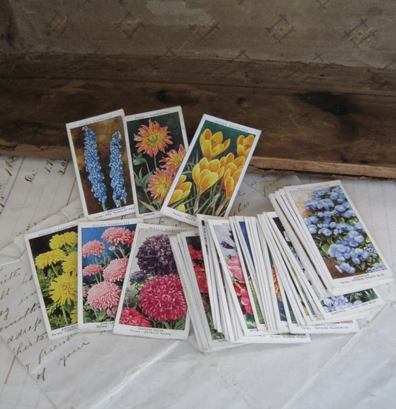 Wills Cigarette Cards Garden Flowers by Sudell Set of 50