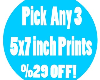 Buy this listing to pick THREE 5x7 inch Signed Prints - Save 29 Percent Than If Bought Seperately - Read Description to Pick Pirints
