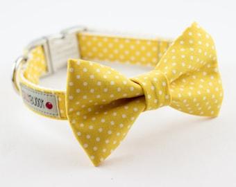 Yellow Polka Dot Bowtie Dog Collar