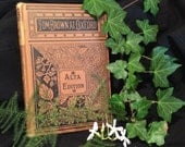 Antique  Book Tom Brown at Oxford -  Blackberry Flowers - Plant - Vintage Book