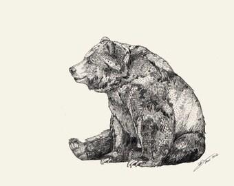 Bear  // A5 Print 5x8