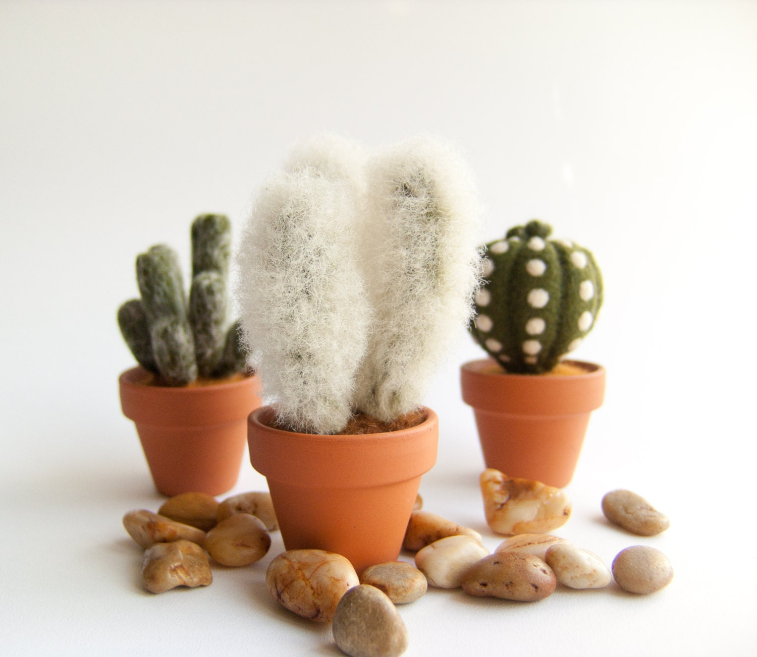 Hairy Cactus Funny Small Gift Home Decor