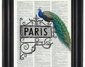 BOGO SALE Dictionary Prints Peacock Art Print Peacock and Paris Dictionary Art Print Peacock Print HHP Original Design