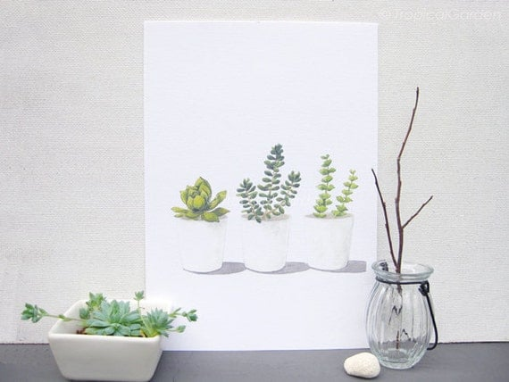 Succulent Watercolor Print - Any ONE 8x11 Succulent Art, Succulent Print / 8x11 Botanical Print, Modern Home Decor