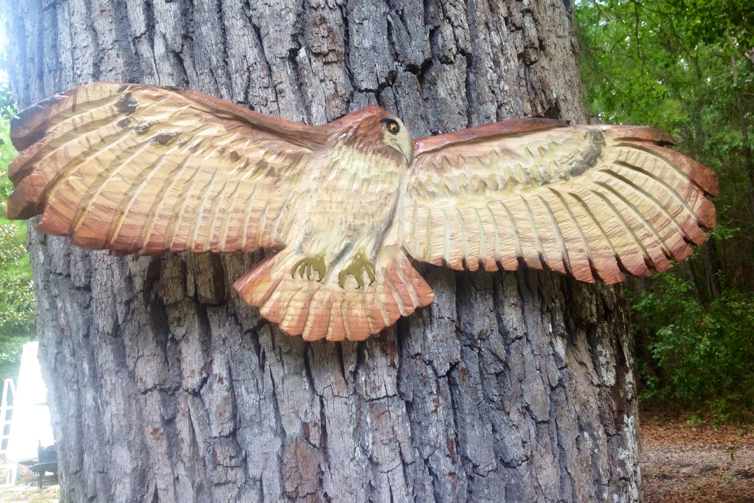 Red tailed hawk wooden chainsaw carving nature by