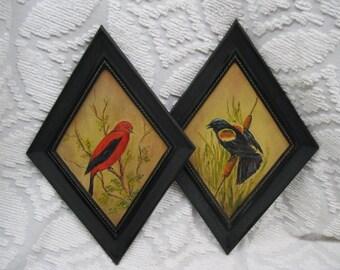 1950s Amateur Bird Paintings in Funky Black Diamond Frames