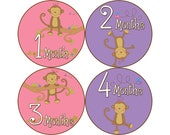 Baby Stickers Monthly, Girls Baby Bodysuit Stickers, Monthly Stickers, Baby Month Stickers, Monthly Bodysuit Stickers, Monkeys (G063)