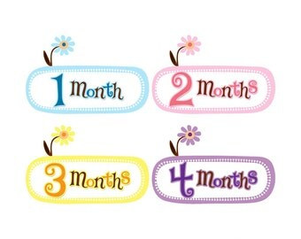 Baby Announcement, Monthly Baby Stickers, Monthly Baby Photos, Baby Gift, Baby Month Stickers, Monthly Stickers, Flowers (GF003)