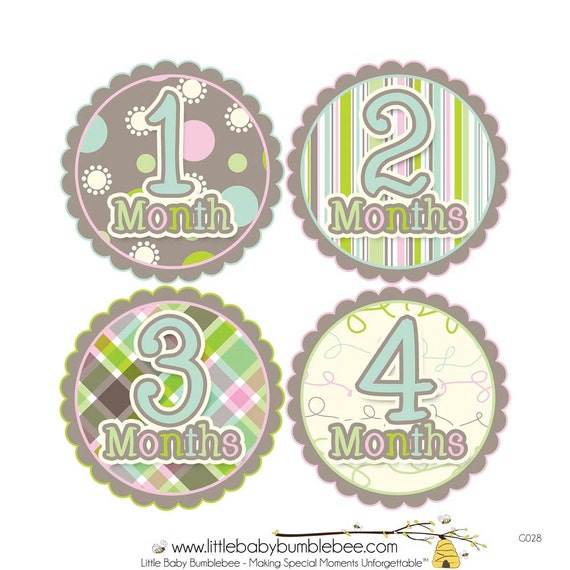 Baby Announcement, Monthly Baby Stickers, Monthly Baby Photos, Baby Gift, Baby Month Stickers, Monthly Stickers, Pastel (G028)