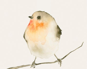 Watercolor Bird Artwork Red Robin