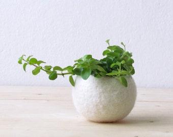 Felt succulent planter / felted bowl / Mini flower vase vase / White vase / wedding gift / CHOOSE YOUR COLOR!