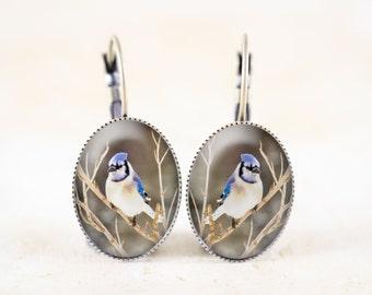 Blue Jay Earrings - Songbird Jewelry, Blue Bird Jewelry Earrings, Bird Photo Jewelry, Bronze Bird Earrings, Nature Earrings, Blue Jay Photo