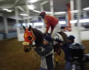 Riders Up Jockey Getting Leg Onto Thoroughbred Race Horse Photo Card