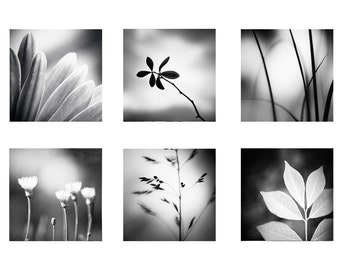 Black and White Photography Set - nature photos dark grey gray gallery wall art print set modern photography neutral fine art photograph