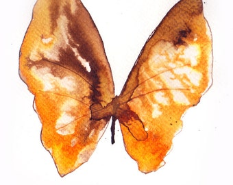 orange and brown autumn butterfly. original watercolour painting