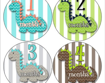 Dinosaur Baby Stickers, Monthly Baby Stickers, Milestone Stickers, Month to Month Stickers, Photo Props Dinosaur Nursery Decor (156)