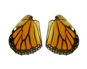 Real Monarch Butterfly Wings for Crafting - Monarch Butterlfy Wings