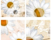 Vintage daisies digital collage sheet 4x4 inch tiles instant download  printable for art and craft, scrapbooking, coasters