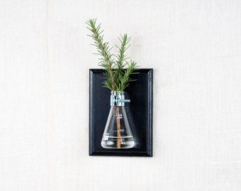 Wall Vase - Black Hanging Vase, Bud Vase - Wall Sconce Vase - Science Chic, Glass Flask