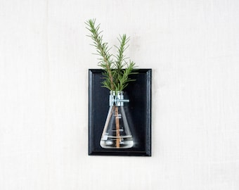Wall Vase - Black Hanging Vase, Bud Vase - Gift Wrapped - Wall Sconce Vase - Science Chic, Glass Flask