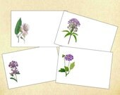 Purple Flower Placecards, Set of 10, Floral Place Cards,Qty.  Botanical Place cards, Escort Cards,
