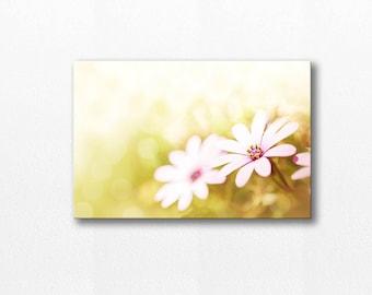 flower photography canvas print 12x12 24x36 fine art photography nature daisy canvas art botanical canvas floral wall decor canvas lemon