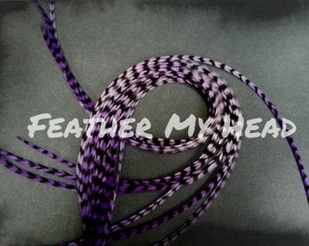 10 Ombre Tie Dye Fade Feather Extensions Whiting  Rooster Feathers  9-12 inch  Multi Colored Enchanted Whispers All Grizzly