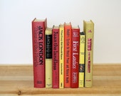Colorful VIBRANT Vintage Book Collection Home Decor Vintage Reading