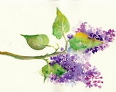 Original Watercolor Painting - Spring Lilac Purple Flowers - One of a Kind Aquarel