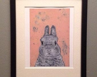 Unframed reproduction print -Dwarf Rabbit on Pink