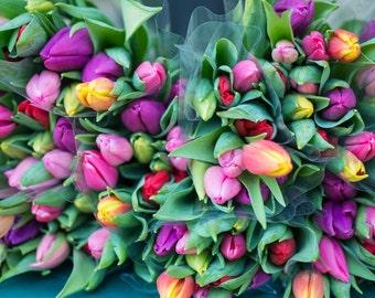 Paris Flower Photography - Kitchen Decor, Tulips at Paris Market, French Travel Photograph, Large Wall Art