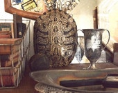Vintage Large Turtle Shell Bohemian Decor Taxidermy Animal