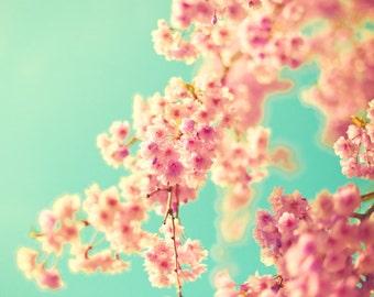 SALE, Nature photography, cherry blossom art, girl nursery decor, large art, large wall art, nursery print, turquoise wall art, pink art