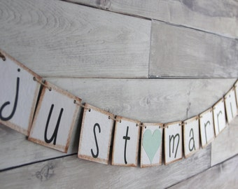 Just Married Banner Wedding backdrop decoration - mint