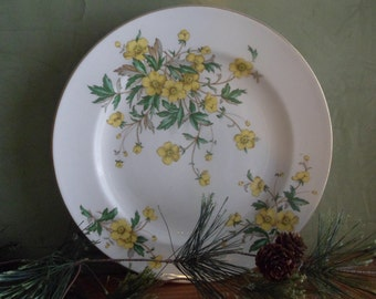 Edwin Knowles Dinner Plates , Buttercup Pattern