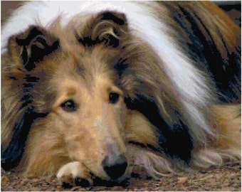 Collie Counted Cross Stitch Pattern Chart PDF Download by Stitching Addiction