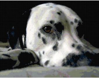 Dalmatian Counted Cross Stitch Pattern Chart PDF Download by Stitching Addiction