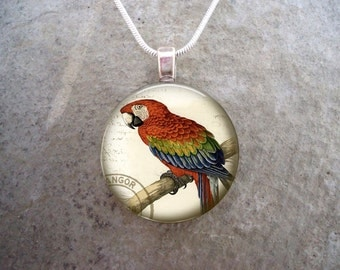 Parrot Jewelry - Glass Pendant Necklace - Victorian Bird 23 - RETIRING 2017