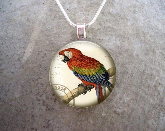 Parrot Jewelry - Glass Pendant Necklace - Victorian Bird 23 - RETIRING 2017