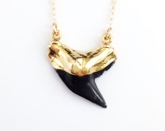 Black Shark Tooth Necklace - Real Shark Tooth - Gold Filled Necklace