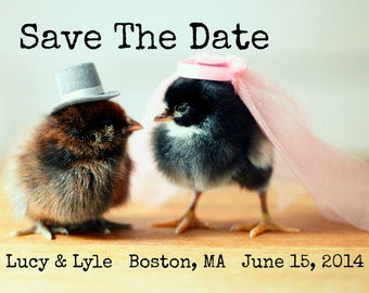 """Save The Date Wedding Magnets With Custom Digital Design Featuring Chicks in Wedding Hats 2x3"""""""