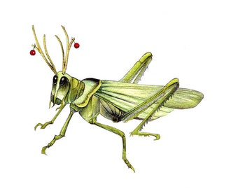 """Festive Grasshopper art print of a drawing I did available 5x7"""" or 8x10"""""""