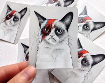 Grumpy Cat STICKER; David Bowie; Grumpy Bowie; Geek Meme