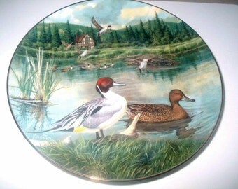 Knowles Collector Plate Jerners Ducks The Pintail 1986