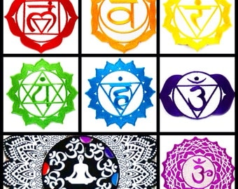 LoopyQ Limited Edition Chakra Pouch by Potent Lifestyle
