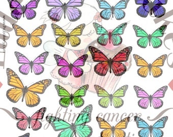 Digital download art - 28 Rainbow Mix Monarch Butterflies