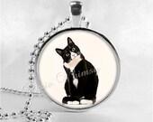 TUXEDO CAT Necklace, Cat Necklace, Cat Pendant, Cat Jewelry, Cat Charm, Glass Photo Art Necklace Pendant, Tuxedo Cat