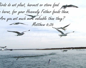 Seagull Ariel Dance2, Matthew 6 verse 26, 5 X 7 Instant Download